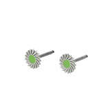 Zolid Polishing Dent-Kit - High gloss polishing, swivel